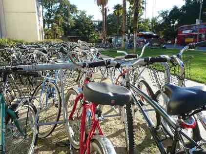 College Bicycles on College Campus
